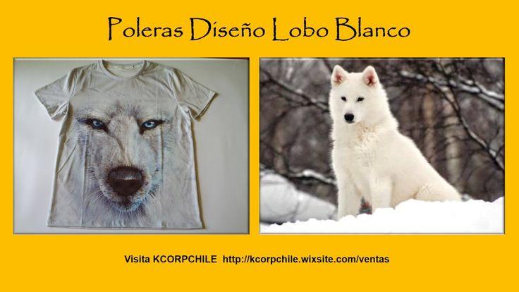 Aviso fotos lobo blanco ene 2017