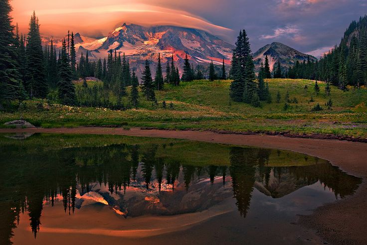 Rainier Resplendency, Washington by Trevor Anderson