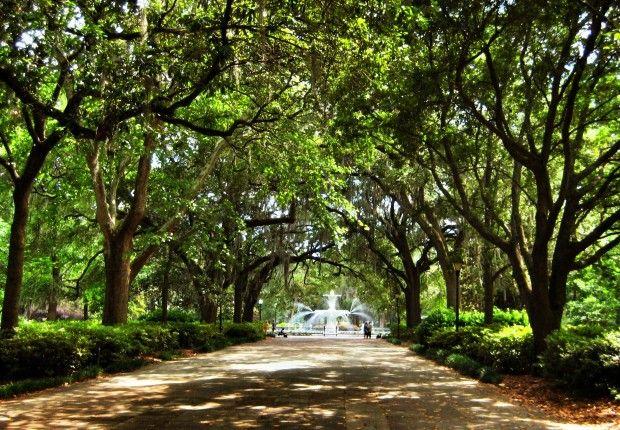 An Actually Useful Guide to Savannah, Georgia photo