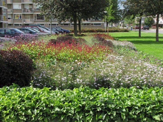 buro mien ruys - tuin & landschapsarchitekten - Middachtenstraat Nijmegen