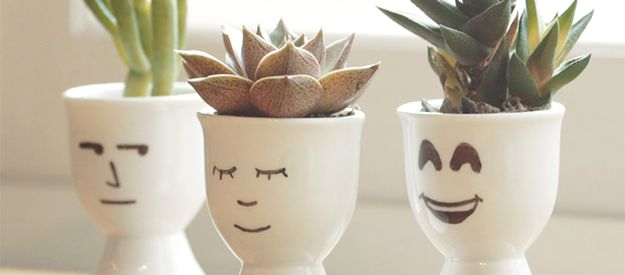 How can you make the cutest plant even cuter? We have five easy ways to make that happen!Learn how to make amazing displays using:Egg HoldersCorkTravel BottlePlastic ToyTea Light CandlesWant more helpful tips to get your green thumb going? Check out these awesome classes:Create a Small-Space Edible GardenTurn Your Thumb Green: Expert Concepts Behind Successful Plant Growing