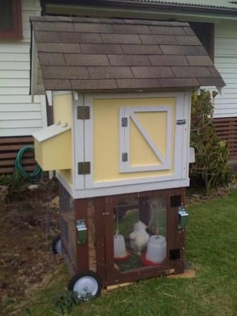 Coop with great instructions and step by step for Small portable chicken coop