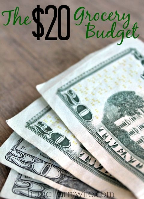 $20 A Week Budget