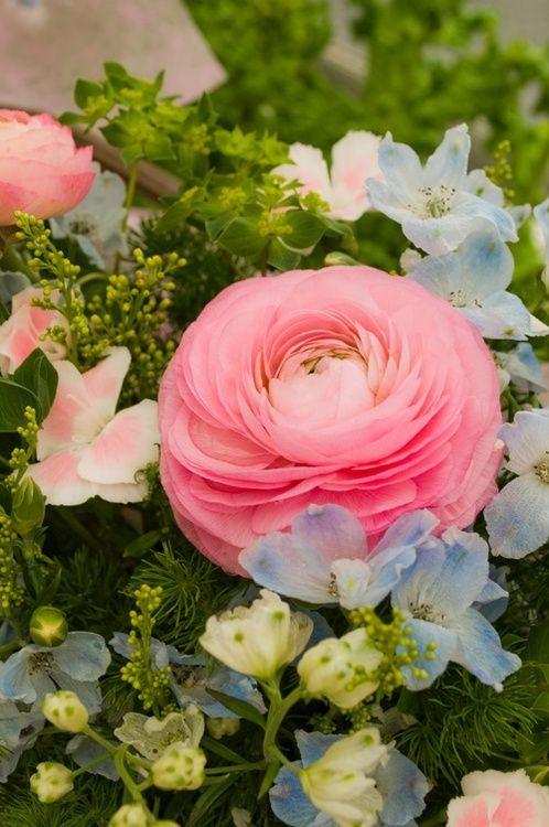 Pink Ranunculus & flower mix.
