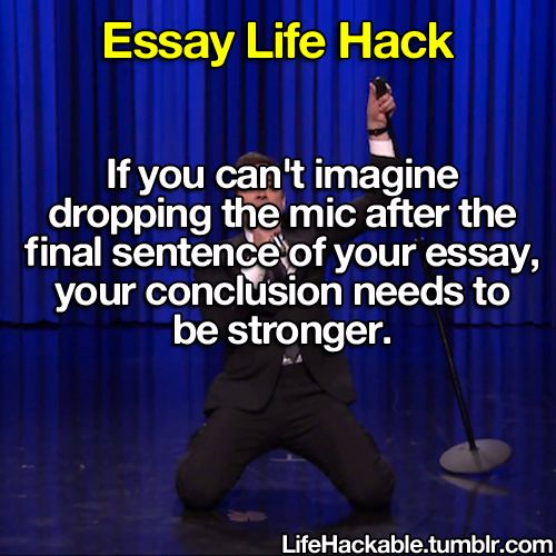 Life hacks essay writer