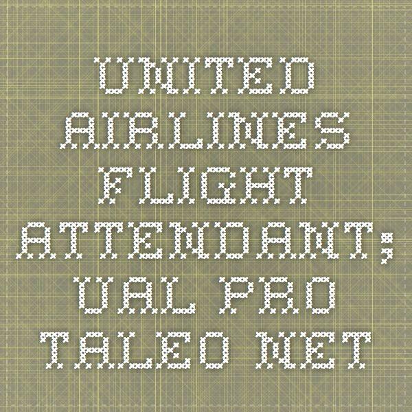 Best 25+ Flight attendant job description ideas on Pinterest - bilingual flight attendant sample resume