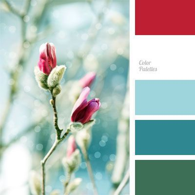 christmas color palettes | blue color, fuchsia color, color palette, color combination