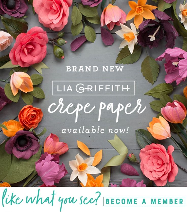 New Crepe Paper Available Now! 🎉🎉🎉 Calling all crepe crafters... We have just introduced new colors to our crepe paper line! We're rolling out new hues in both our heavy and lightweight crepe and they come in convenient 10 packs so you can craft till your heart's content. Find our more here https://liagriffith.com/announcing-our-new-crepe-paper/⠀⠀⠀⠀⠀⠀⠀⠀⠀ *⠀⠀⠀⠀⠀⠀⠀⠀⠀ *⠀⠀⠀⠀⠀⠀⠀⠀⠀ *⠀⠀⠀⠀⠀⠀⠀⠀⠀ #crepepaper #crepepaperrevival #crepepaperflowers #crepepaperflower #paper #papercut #paperlove…