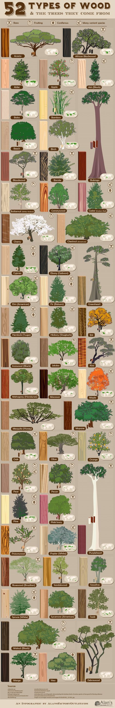 52 types of wood and the trees they come from
