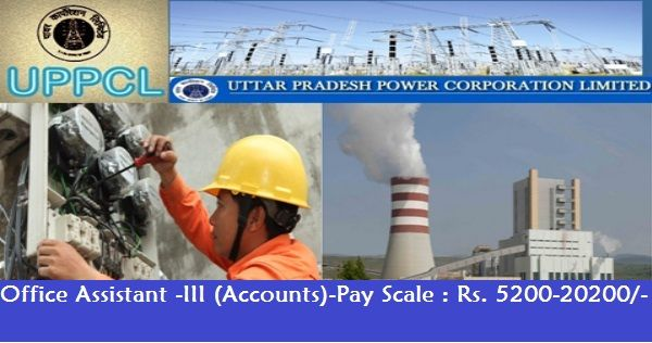 Office Assistant job   Uttar Pradesh Power Corporation Limited-Recruitment-30 Vacancies-Office Assistant -III (Accounts)-Pay Scale : Rs. 5200-20200/ Apply Online-Last Date 17 March 2017