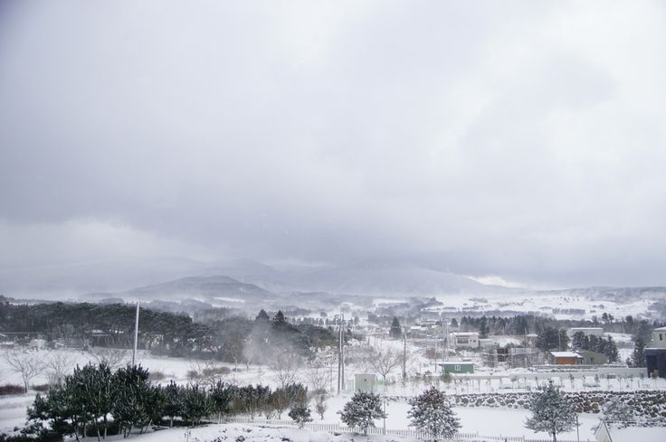 Snowy Scene of Mt. Han-ra Jeju Island, South Korea