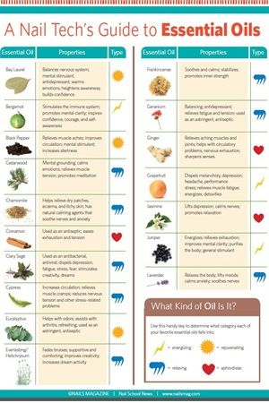 A Nail Techs Guide to Essential Oils - Education - NAILS Magazine