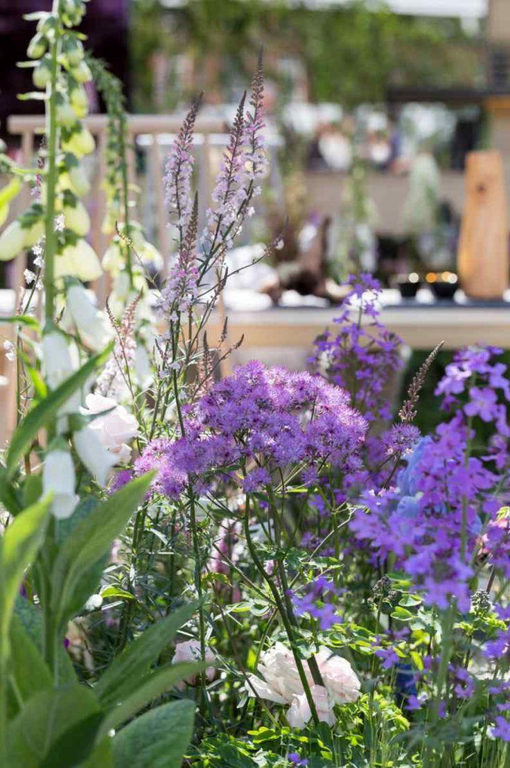 best gardening images on pinterest landscaping backyard