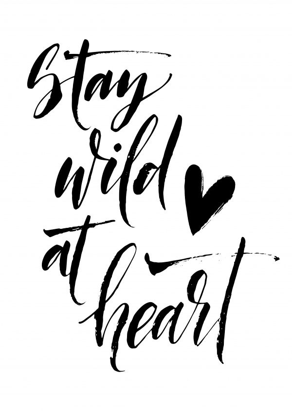 Stay wild at heart | Typografie | Echte Postkarten online versenden | MyPostcard.com