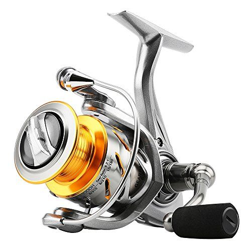 Skysper New Fishing Reels Spinning Reels 10+1 Stainless B... https://www.amazon.co.uk/dp/B073VGYM71/ref=cm_sw_r_pi_dp_x_Ga4gAbFZ00YFA