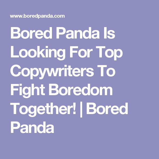 Bored Panda Is Looking For Top Copywriters To Fight Boredom Together! | Bored Panda