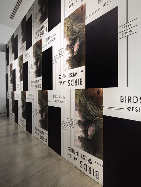 """""""Taryn Simon: Birds of the West Indies"""" Installation View, Gagosian Beverly Hills, 2014, by Taryn Simon"""