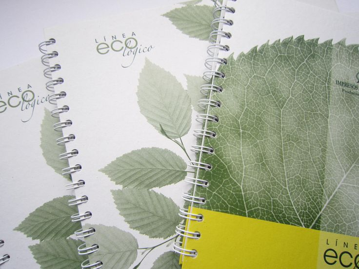 Cuadernos y agendas ecológicos