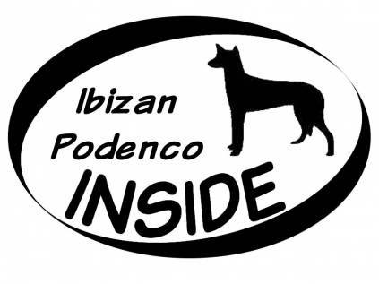 Hund Inside Auto AufkleberInside Aufkleber: Ibizan Podenco