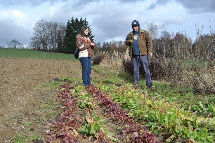 Zahrada paní Markové - farma Mlýnec a přeživnší mangold #thirwinebar #bio  http://www.thir.cz/