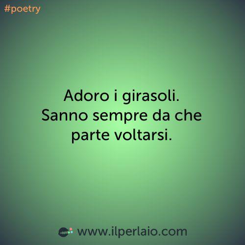 Adoro i girasoli. Sanno sempre da che parte voltarsi. #perla #perle #frase #frasi #emozioni #emotion #girasole #poetry