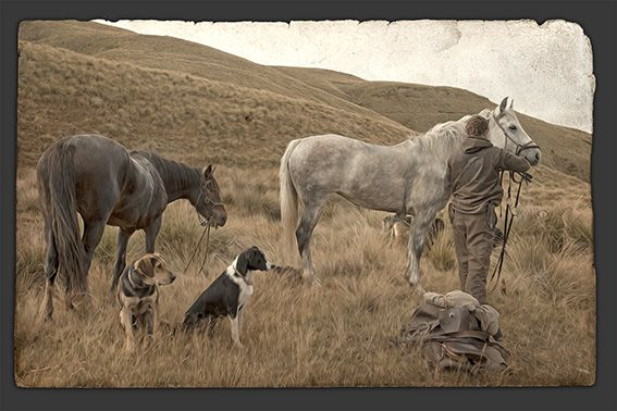 Saddle Up - muster scene by photographer, Nathan Secker. Available from retailers throughout New Zealand and online. www.imagevault.co.nz