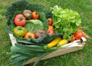 Quantité de légumes à semer pour une famille de 4 à 5 personnes