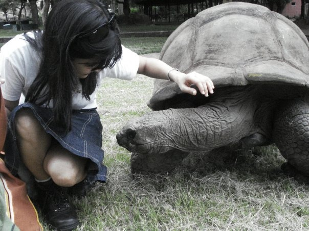 Having a moment with the ancient tortoise, Zimbabwe [Feb 2010]