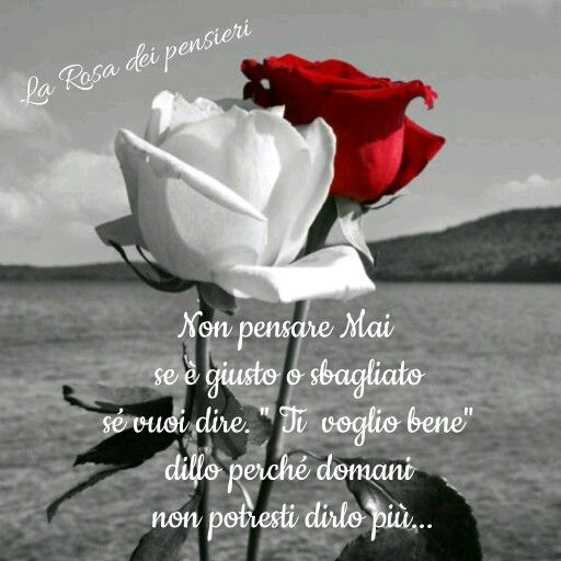 La Rosa del pensiero