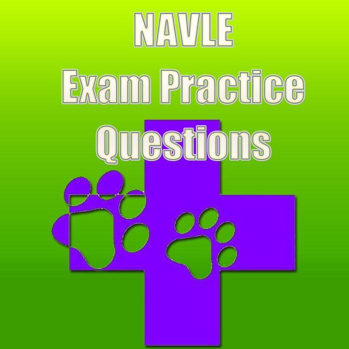 Check out these free NAVLE exam practice questions if you're studying to enter the field of animal health care. These NAVLE exam practice questions will help you be prepared for the NAVLE exam.