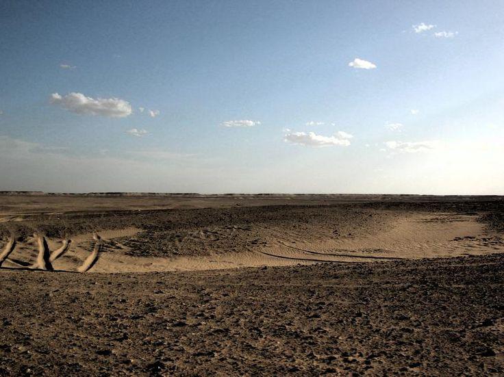 """""""Sáhara Occidental - Referéndum ya"""""""