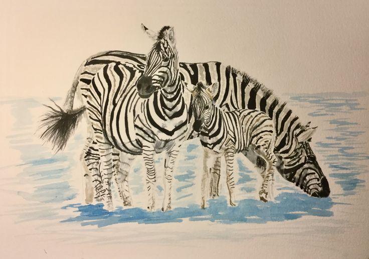 Crossed Zebras #art #watercolour #pen and Ink #Zebra