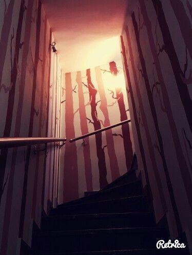 Stairway through forest