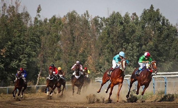 Der Iran – ein Tag beim Pferderennen in Banda Torkaman - http://blog.luckyhooves.de/der-iran-ein-tag-beim-pferderennen-banda-torkaman/