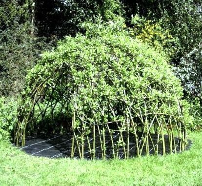 How-To: Living Willow Playhouse | Make: