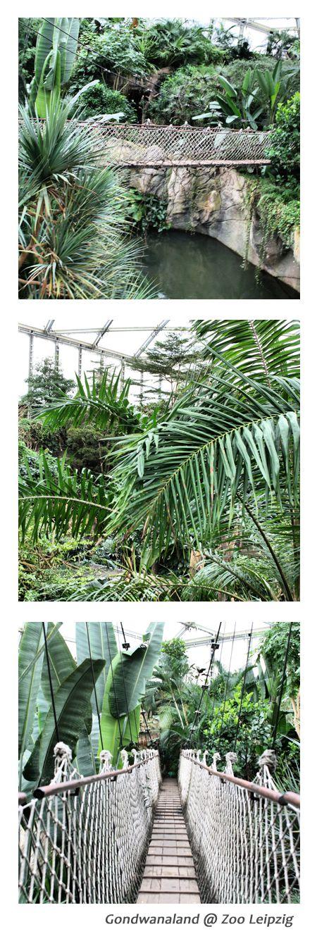Ausflugstipp: Ab ins #Gondwanaland im Leipziger Zoo #Leipzig #VisitLeipzig #Urlaub
