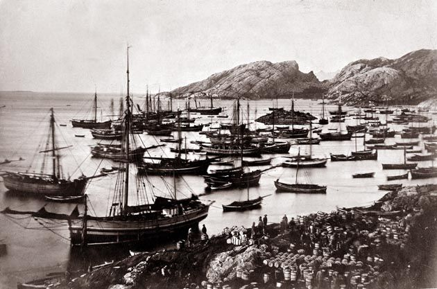 From Wikiwand: Fra sildefiske i Bodø omkring 1870Foto: Salten Museum