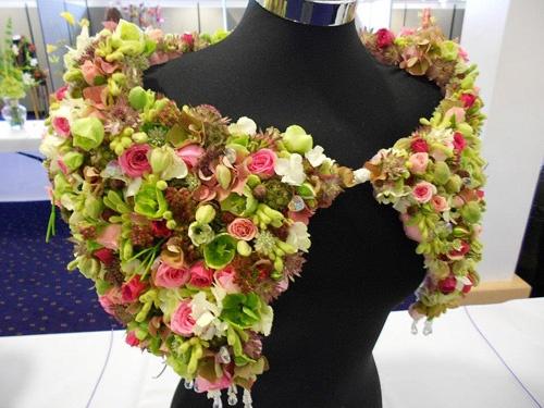 Kwiaciarnie i florystyka - Forum kwiatowe - kwiaty, rośliny to nasza pasja