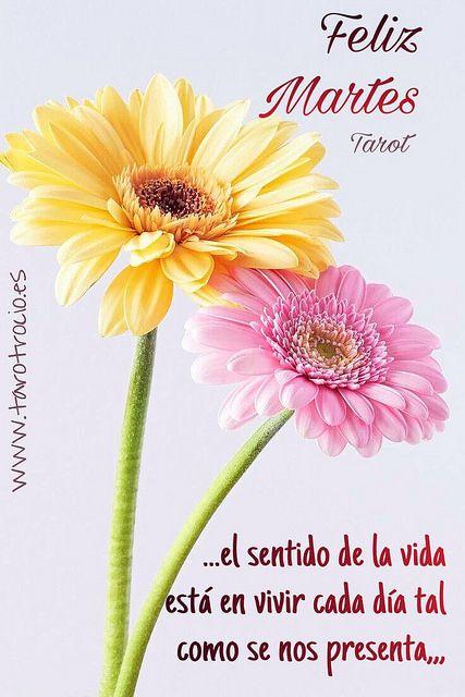 ℱℰℒℐℤ ℳᎯℛᏆℰЅ #ᏆᎯℛᎾᏆ | #FelizMartes #Tarot ❤️ #TarotDelAm… | Flickr