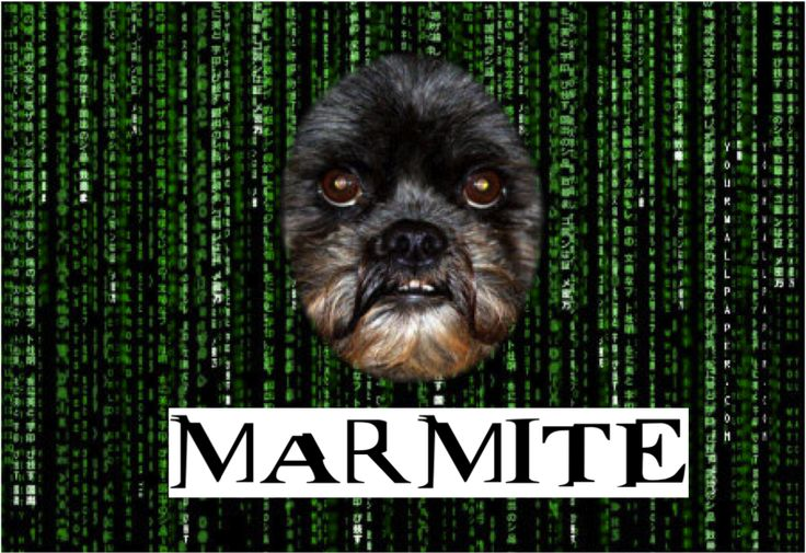 """Beware of the Matrix"" says Marmite"