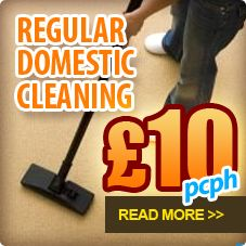 Affordable Regular Domestic Cleaning in Ealing http://www.house-cleaning-services.co.uk/west-london/domestic-cleaning-ealing.html