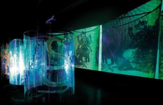Nalini Malani  de installatie Transgressions, een eigenzinnige combinatie van schilderij, video en bewegende schaduwen, vier cylinders van mylar plastic die Malani van binnen heeft beschilderd . Deze cylinders draaien langzaam in het rond en worden doorkruist door drie beamers die video's projecteren op de muur.