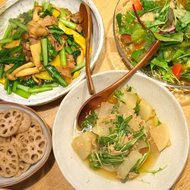野菜ずくし…… - 14件のもぐもぐ - 小松菜のオイスターソース炒め、大根水菜の煮物、蓮根のキンピラ、サラダ… by awim