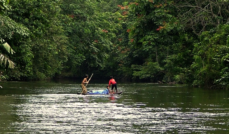 Down The River with a boat at TessoNilo NationalPark, Riau - Indonesia