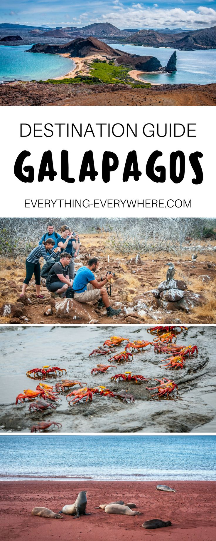 The ultimate guide to planning your trip to the Galapagos Islands, a world renowned UNESCO site located off the coast of Ecuador. Things to see and do + practical tips relating to airports, visas, and currency. Travel in South America. | Everything Everywhere Destination Guide