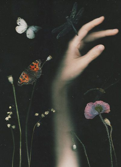The Secret Garden by NataliaDrepina.deviantart.com on @DeviantArt