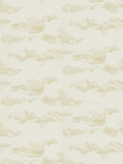 Nuvola  in shell, a feature wallpaper from Harlequin, featured in the Amazilia collection.