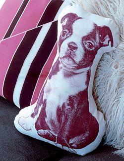 DIY Pillow with photo from your pet #dog - Kussen met foto van je huisdier #hond