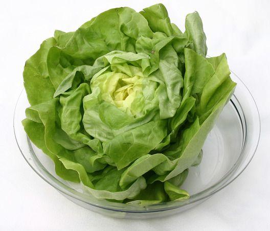Fejes saláta tulajdonságai.