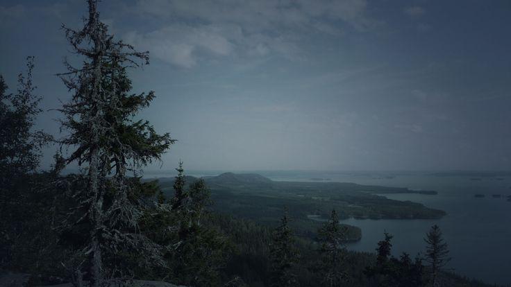 Suomen 100 luontohelmeä